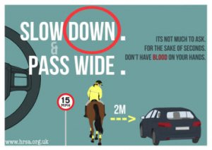Slow Down for Horses